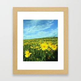 Field of Yellow Framed Art Print