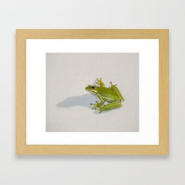 tree frog and his shadow Framed Art Print