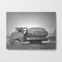 Spud Potato Metal Print