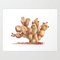 Watercolor Veteran Paddle Cactus Art Print