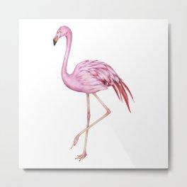 Animal Art  #5 Metal Print