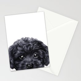 Black toy poodle Dog illustration original painting print Stationery Cards