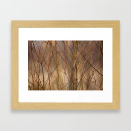 Canadian Prairies 10 Framed Art Print
