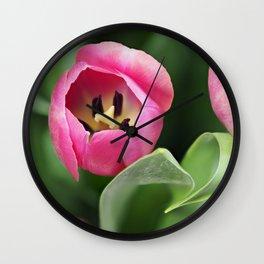 Pink Tulip Wall Clock