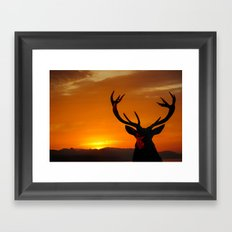 Highland Stag Framed Art Print