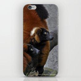 Red Ruffed Lemur iPhone Skin