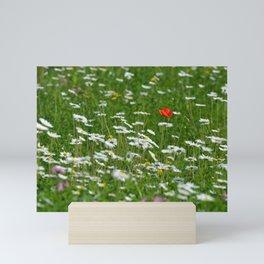 Poppy seed on a meadow Mini Art Print