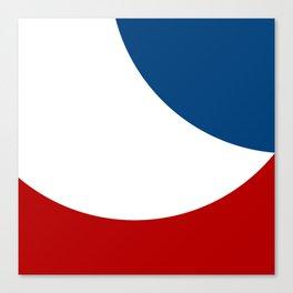 FLAG - FRANCE Canvas Print