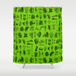 Anatomy Shower Curtain