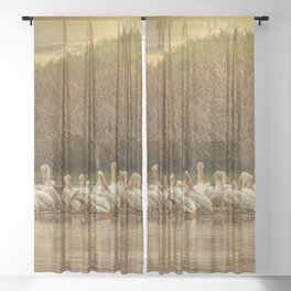 White Pelican Fleet 6801 - Northwestern Nevada Sheer Curtain