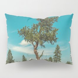 Lone Pillow Sham