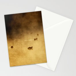 COOTS IN LAKE Stationery Cards