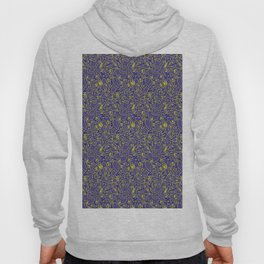 Celtic Morning Reflections Hoody