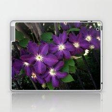 Purple Clematis Laptop & iPad Skin