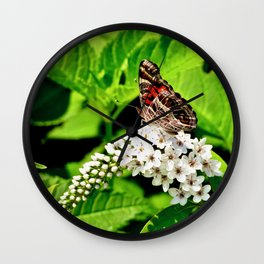 American Painted Lady Butterfly Wall Clock