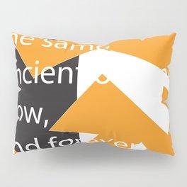 The Same Pillow Sham