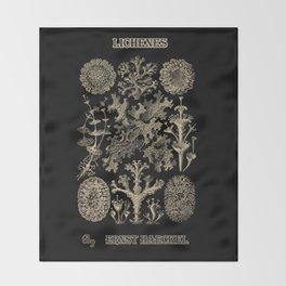 """""""Lichenes"""" from """"Art Forms of Nature"""" by Ernst Haeckel Throw Blanket"""