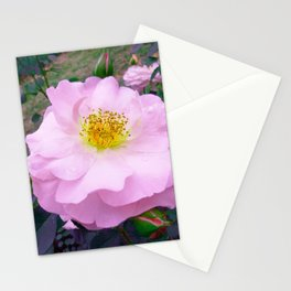 Funky Rose baby pink & yellow Stationery Cards