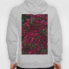 Carmel Blooms Hoody