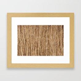 Thousands of reeds Framed Art Print
