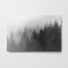 Oh Foggy Days - 29/365 Metal Print
