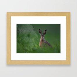Hare and Hound Framed Art Print