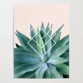 Agave geometrics - peach Poster