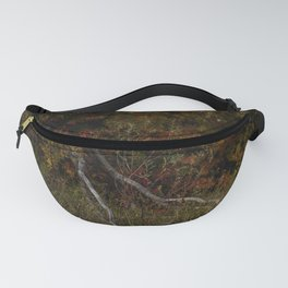 The cycle of life and death. Dried willows against the  colors of the foliage of trees in early autumn. Fanny Pack