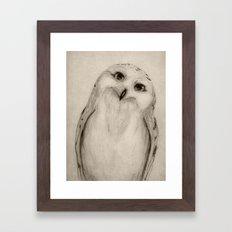 Snowy Owl Sketch Framed Art Print