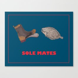 sole mates Canvas Print