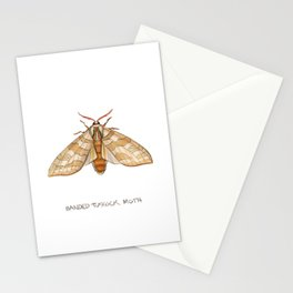 Banded Tussock Moth Stationery Cards