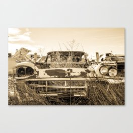 Thunderbird Field Canvas Print