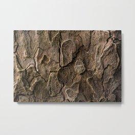 Bark 2 Metal Print