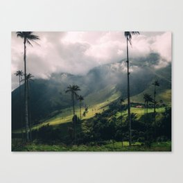 Salento Wax Palms Canvas Print