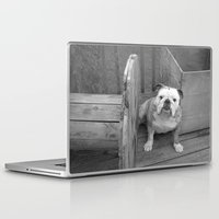 bulldog Laptop & iPad Skins featuring Bulldog by Kaleena Kollmeier