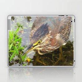 Young Green Heron Laptop & iPad Skin