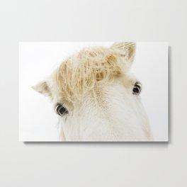 Silver Bullet - Icelandic horse Metal Print