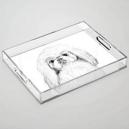 Cartoon Pekingese Dog Acrylic Tray