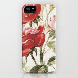 Vintage Botanical No. 4 iPhone Case