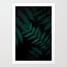 Dark Leaves II Art Print