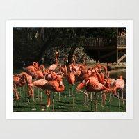Big Pimpin' Flamingo Art Print