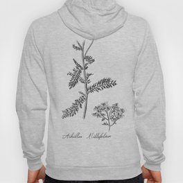 Yarrow Botanical Illustration Hoody