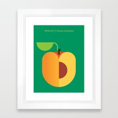 Fruit: Apricot Framed Art Print