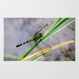 Eastern Pondhawk Dragonfly Rug