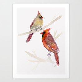 Cardinals Art Print