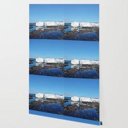 Icebergs along the Tidal shelf Wallpaper