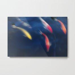 Koi fish in a pond Metal Print