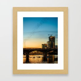 Congress Avenue Bridge Bat Watching Framed Art Print