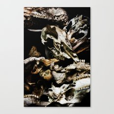 Found Ancients Canvas Print