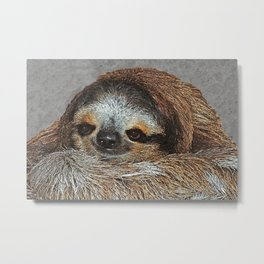 SLOTH LOVE Metal Print